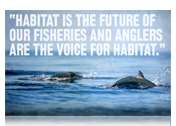 Habitat is the Future